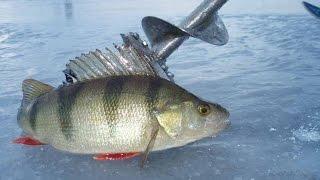 Мир рыбалки харьков барабашова